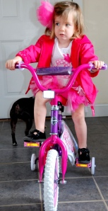 Trying out the new bike!  She hasn't quite figured out how to pedal yet, but she will soon.
