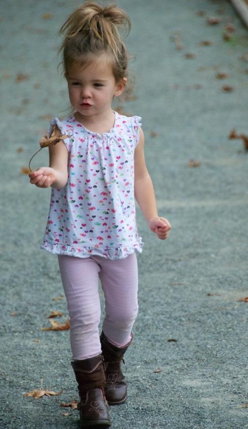 Maddie bringing me a leaf she found on our walk.