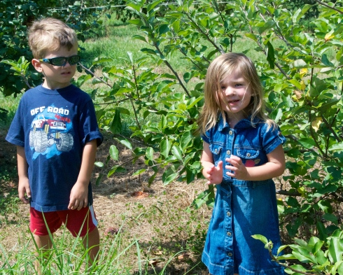 Picking some apples-it got HOT in the orchard.