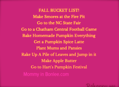 fall-bucket-list-make-smores-at-the-fire-pit-go-to-the-nc-state-fair-go-to-a-chatham-central-footbal-66191