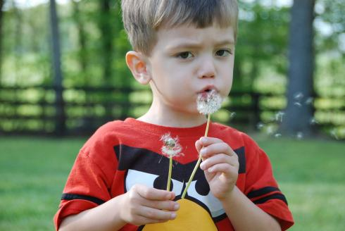 We spent a lot of time this spring and summer playing outside.  The kids loved blowing dandelion seeds everywhere, and would run to them anytime they saw one, no matter where we were.