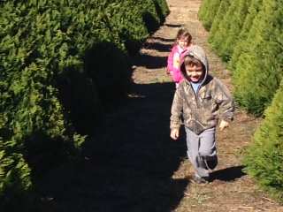 We wrapped up the year with a great Christmas!  This is at the Doby Christmas Tree Farm, where we get our tree every year.