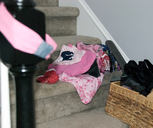 Hey!  I folded that laundry before I piled it on the stairs!