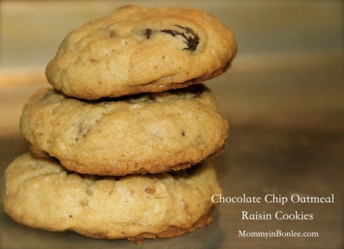 oatmeal raisin cookie pic
