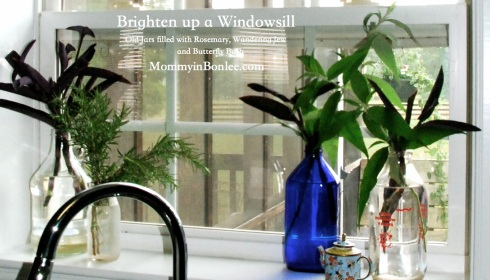 Brighten up a windowsill2